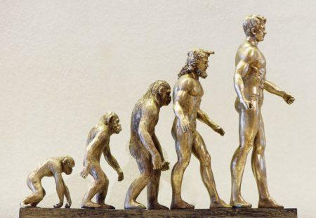 A vida sedentária e o envelhecimento acabam prejudicando essa característica que levou milhões de anos para ser alcançada.