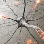 Caminhar regenera o cérebro, alivia a tristeza e o estresse