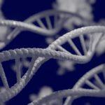 Cientistas brasileiros criam banco de dados genômicos de idosos